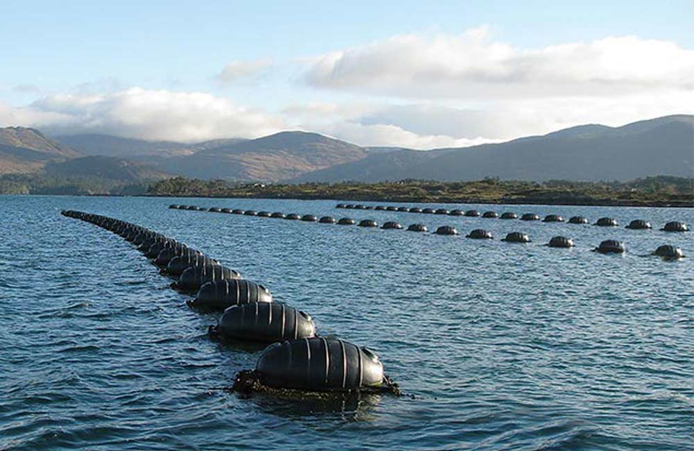 Marine aquaculture mussel floats