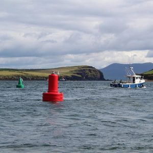 Red and green JFC Marine G1200 Gannet Navigation Buoy in use