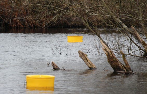 Water quality buoys in use