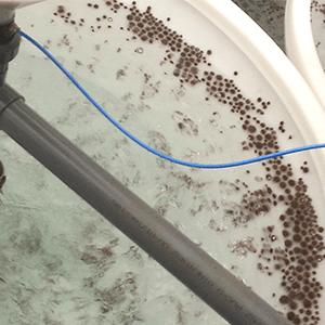 JFC Marine Aquaculture