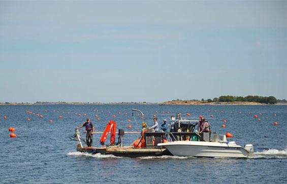 JFC Marine Single Line Mussel Floats